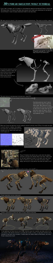 3D Skeleton Wolf Tutorial