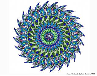 Focus 31 Colored