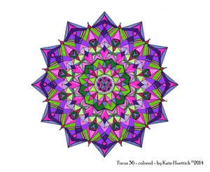 Focus 36 (colored)