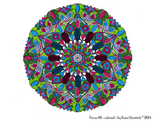 Focus 40 Colored