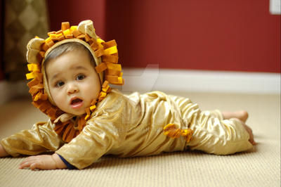 Lion Cub 9 by rebelx