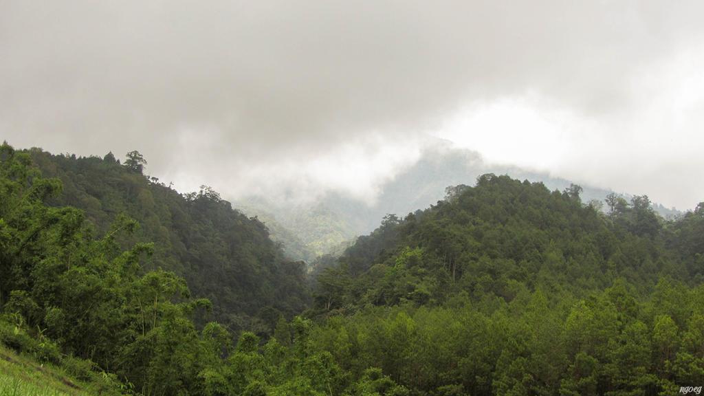 Mt Kawi by Ngoeg
