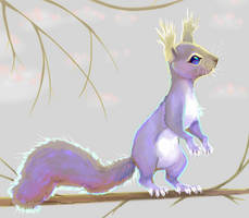 Greyish squirrel by X--O