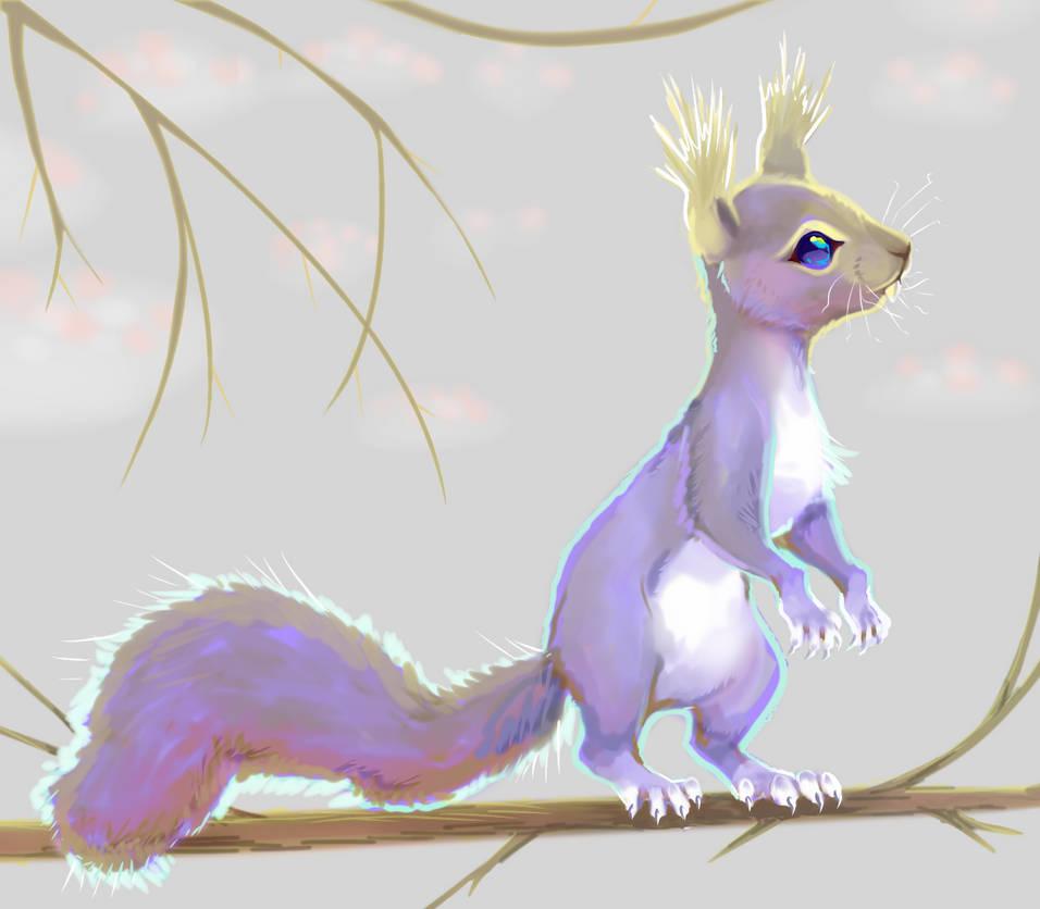 Greyish squirrel by X--O