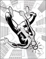 SPIDER-MAN by johnbeatty
