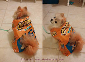 Cheetoge by BiccaBee