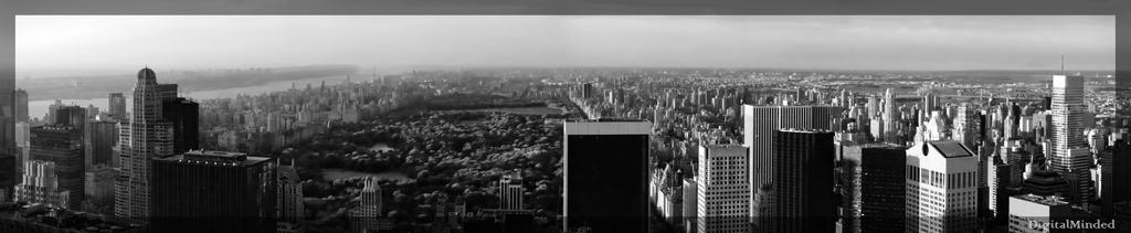 Central Park by digitalminded