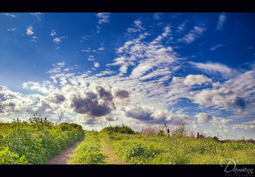 Green Field I by Unilight