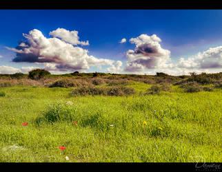 Green Field II by Unilight