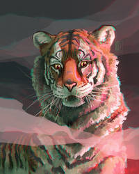 Day 2 - Siberian Tiger