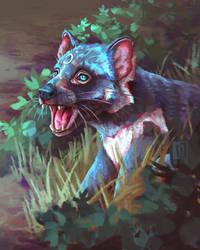 Day 4 - Tasmanian Devil