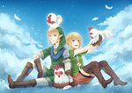 Hyrule Warriors:Link and Linkle