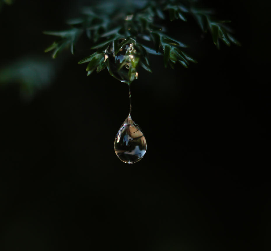 Frozen Tears by MelanieCarey