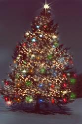 Christmas Tree by TheJerk4
