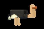 Minecraft Ostrich