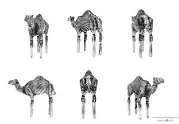 Scale Skin Camel 4600x3200 by AtomAlchemy
