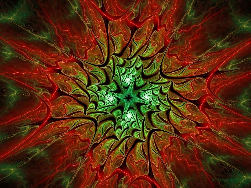 Poinsettia by PzzPod