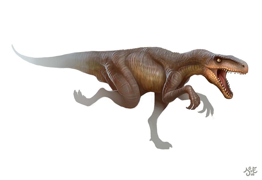 http://fc04.deviantart.net/fs39/f/2008/350/8/c/Herrerasaurus_by_einen.png