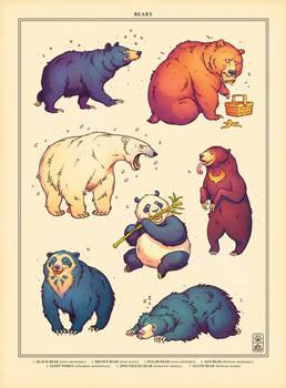 Bear Week