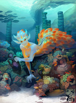 Nudibranch Mollusk Mermaid