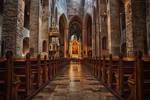 Road to Transfiguration