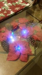 Poinsettia lights by dragonfury678