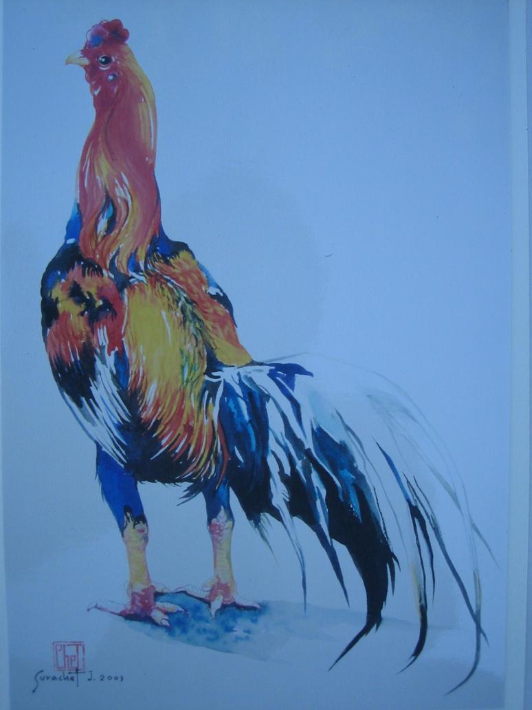 Fighting Rooster by LeelaThai on DeviantArt