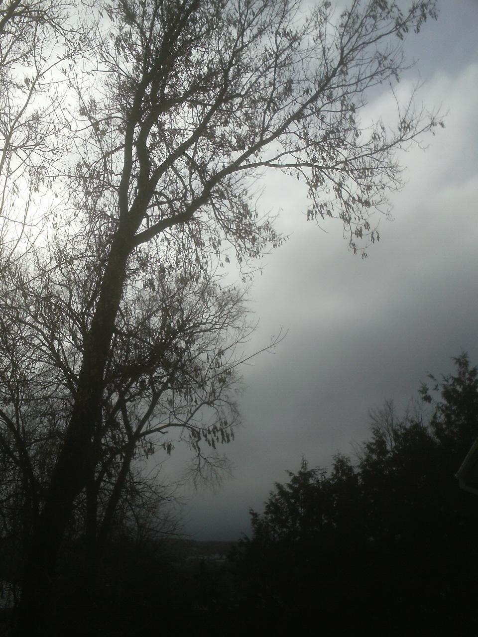 dark morning sky by BlueIvyViolet