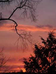 dec 16th sunset by BlueIvyViolet