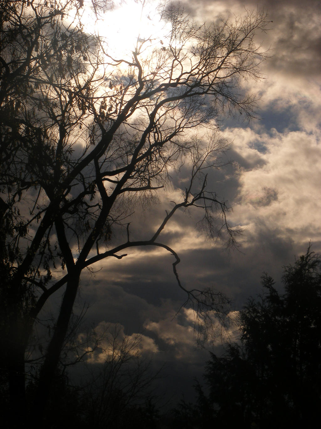 weather in my area 4 by BlueIvyViolet