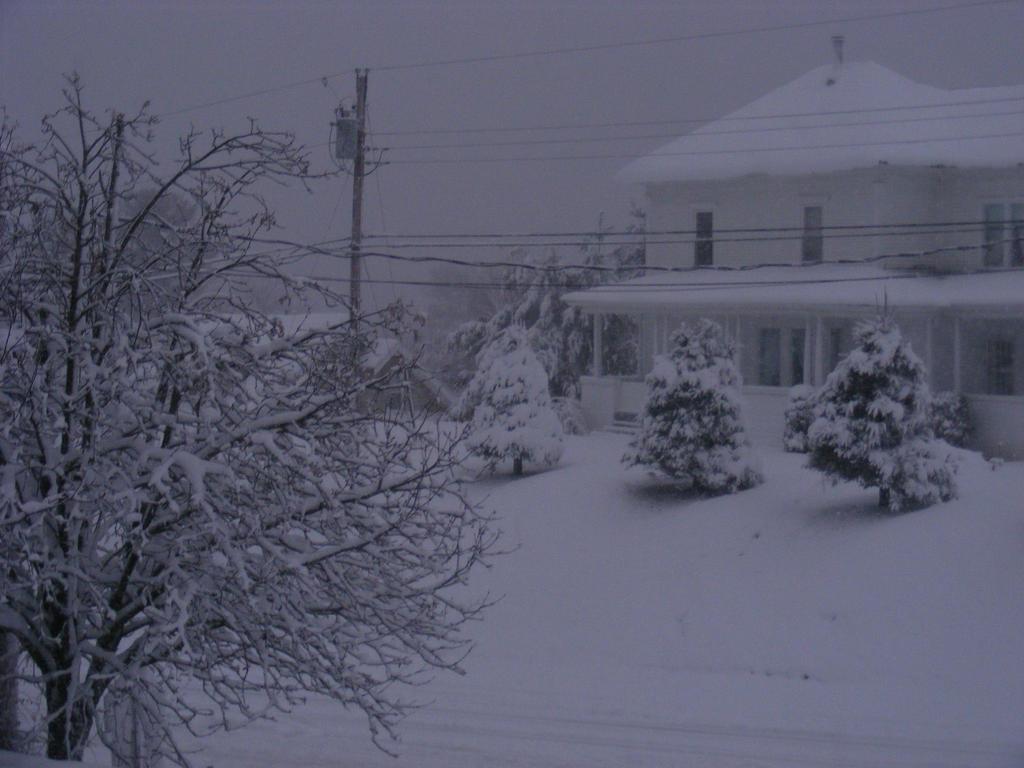 Winter Storm 2014 nov 2nd by BlueIvyViolet