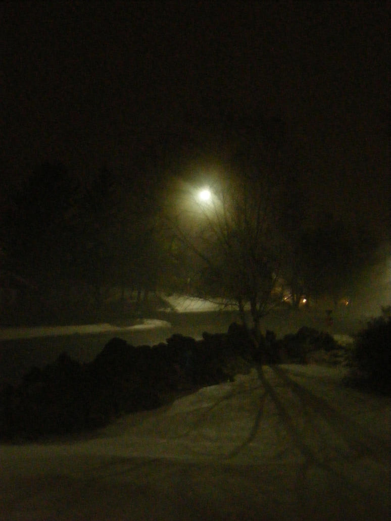 one foggy night by BlueIvyViolet