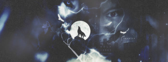 Exo Wolf Cover
