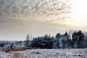 Winter landscape by AQJack