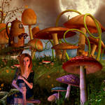 In the mushrooms forest