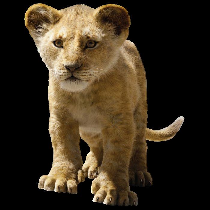 Disneys Young Simba Transparent By Camo Flauge On Deviantart