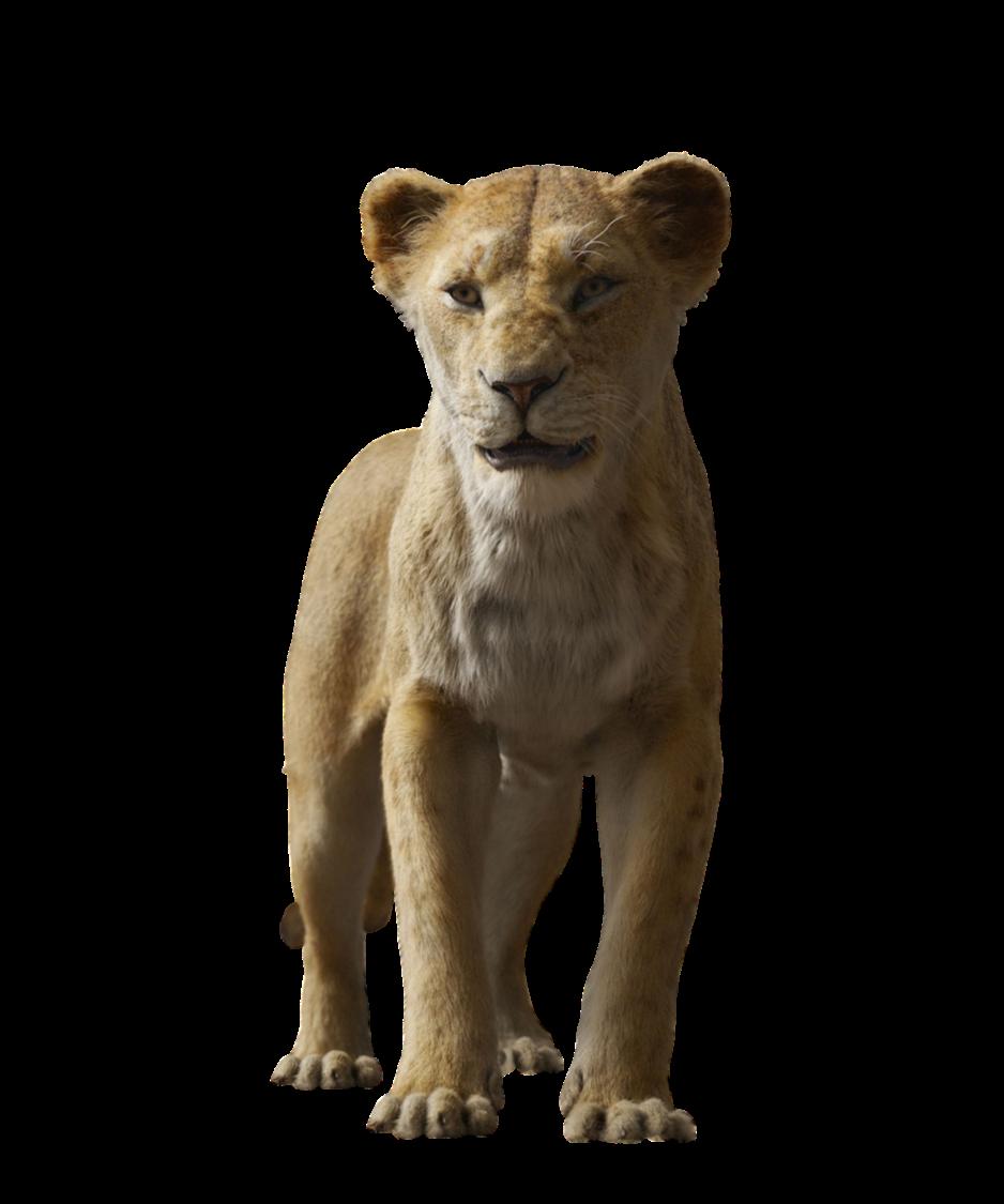 Disney S Sarabi Transparent By Camo Flauge On Deviantart