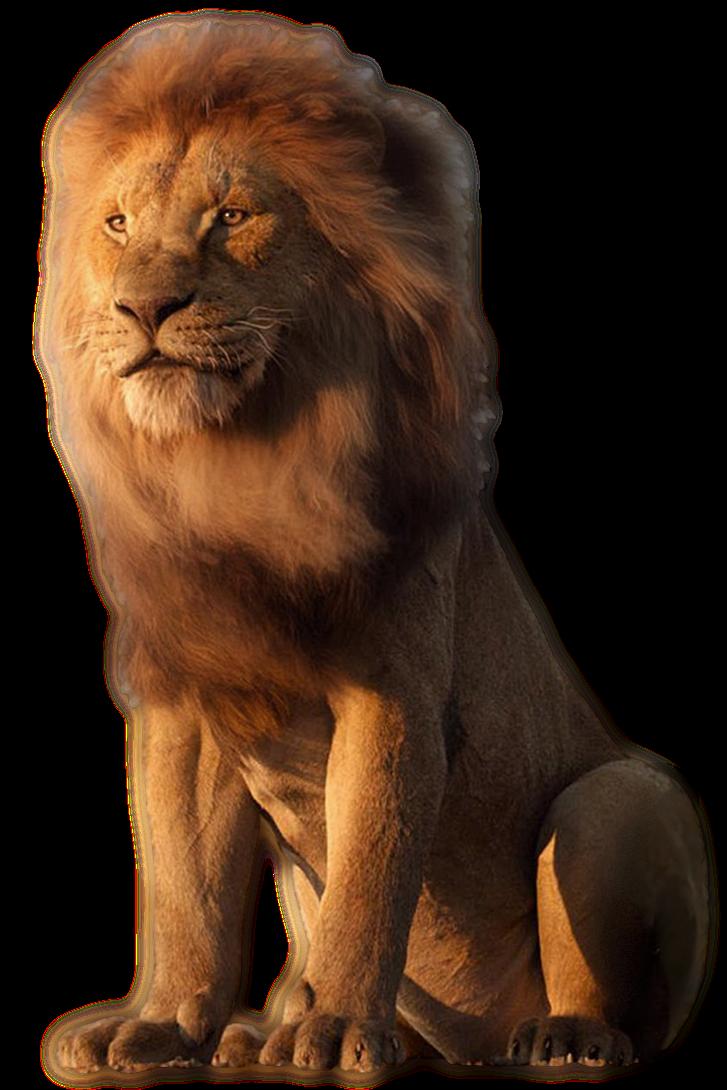 Disneys Mufasa Transparent By Camo Flauge On Deviantart