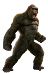 MonsterVerse: King Kong - Transparent!