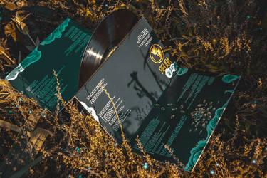 Afterlight - vinyl by KenshinPony