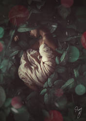 a land without jasmine by Eyesoneyes