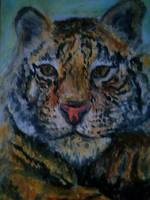 Tiger Rawr by Redeyedmoon