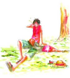 Nami x Luffy nap