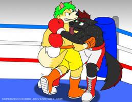 Commission: Kye vs Hik by SuperAbachiBro
