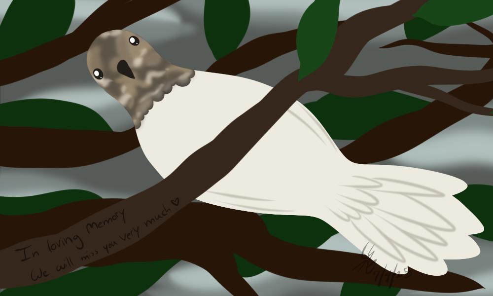Checkers's dove by silver-phoenix103