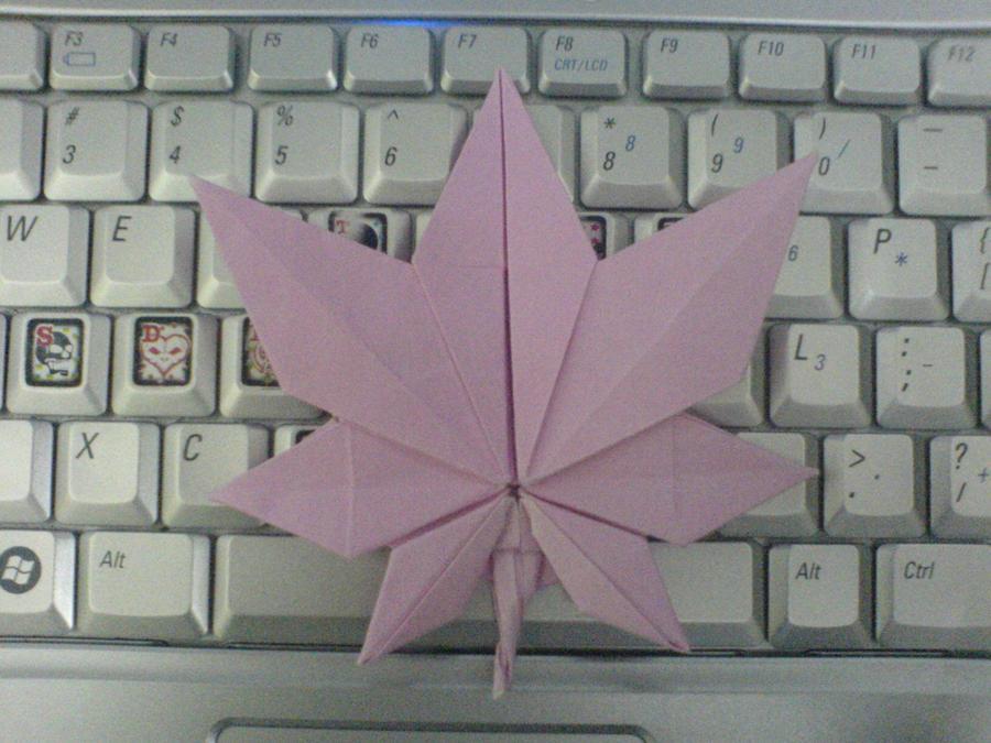 Maple Leaf Origami by candy-sama on DeviantArt - photo#37