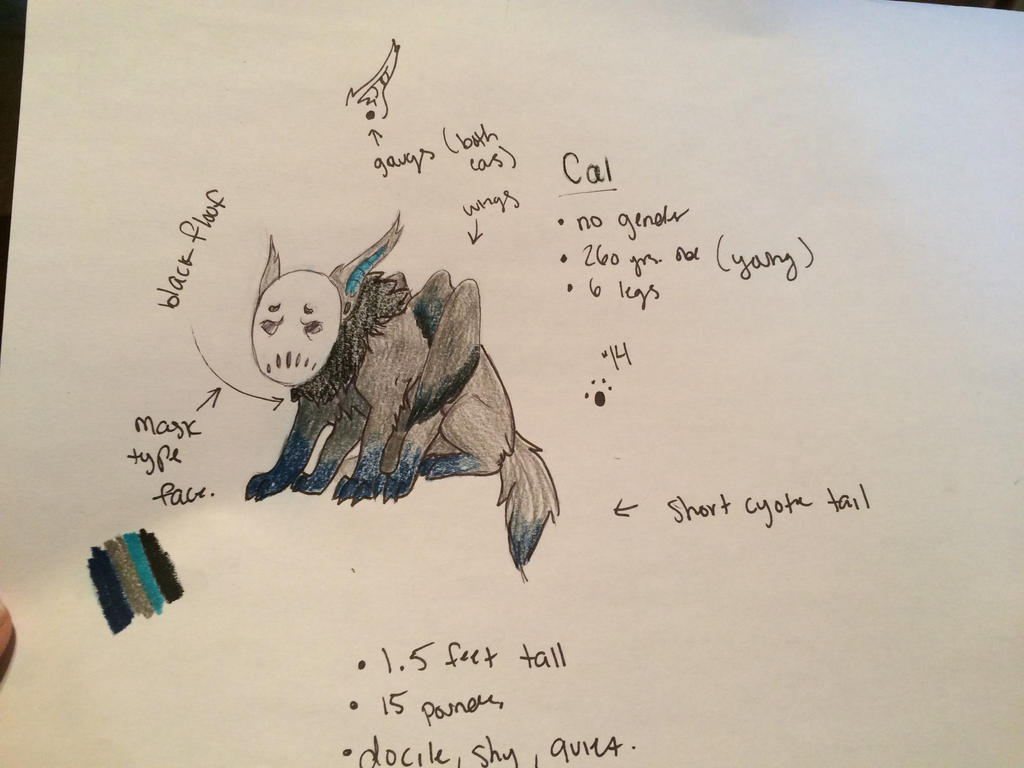 .:Cal Ref Sheet:. by WolfSongg