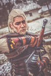 Silver for monsters/ The Witcher 3/ Geralt Cosplay by BlinksCosCave