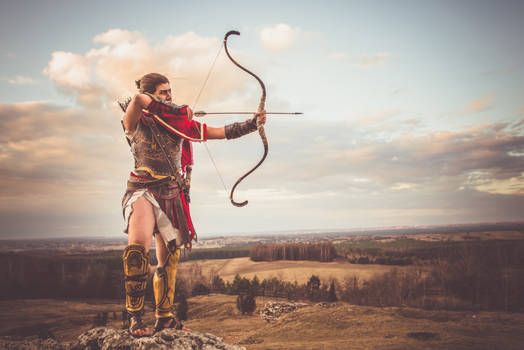 Hunter/ Assassin's Creed: Odyssey/ Alexios cosplay