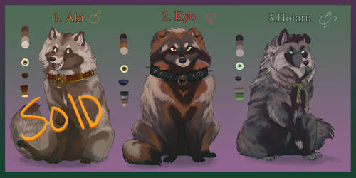 Tanuki of the Palace | Adopts | 2/3 ON HOLD